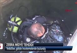 Aygır Gölündeki zebra midye tehdidi için bakanlık devreye girdi