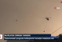 Dalamandaki yangında helikopterler havadan müdahaleye başladı