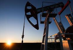 Petrolün varili 67,21 dolar