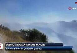 Bodrumda yangın Alevler yerleşim yerlerine yaklaştı