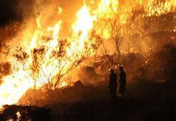 Bodrumda korkutan yangınlar kontrol altına alındı