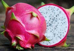 Ejder meyvesi nedir Ejder meyvesinin yararları nelerdir