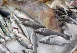 Oltayla 12 kiloluk balık yakaladı