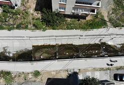 İstanbulda Batı Nil Ateşli Virüsü tehlikesi