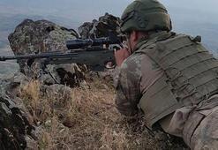 Son dakika: PKKda çözülme sürüyor... Teslim oldular