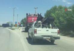 Trafikte şaşırtan görüntüler...