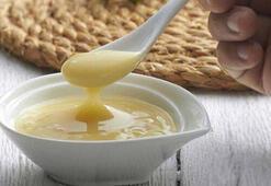 Arı sütünün yeni bir faydası ortaya çıktı