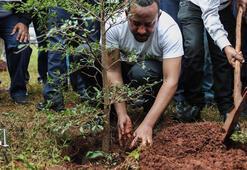 Etiyopyada bugün 200 milyon fidan dikilecek