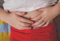 Rotavirus ishali neden olur