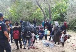 Çanakkale'de 5 günde 290 kaçak yakalandı