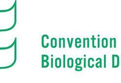 'Biyolojik çeşitlilik' dönem başkanıyız
