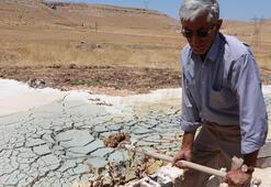 Fıstık tarlasına su kuyusu açmak isteyen çiftçinin büyük şaşkınlığı