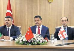 Fındıkta 3 ülke anlaştı... 'Hasat' öncesi stratejik imza