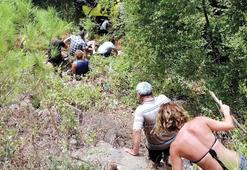 Safaride dehşeti yaşamışlardı Kimliği belli oldu