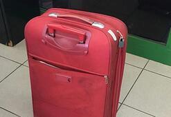 Valizin içinden çıktı Şoke olacaksınız