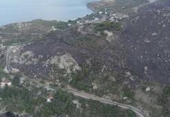 Marmara Adasındaki yangın tamamen kontrol altına alındı