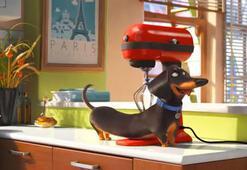 Evcil Hayvanların Gizli Yaşamı filminde hangi oyuncular seslendirme yapıyor