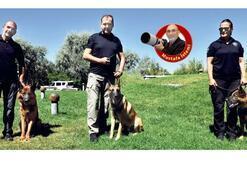 Dedektör köpeği Maks artık emekli