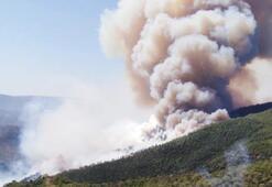 Korkulan oluyor Urladaki yangın köye sıçradı