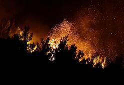 Son dakika | İzmirdeki yangın kontrol altına alındı