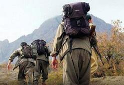 Sıcak gelişme Bakanlık duyurdu: 4 terörist teslim oldu