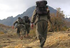 PKKya bir şok daha Çağrıları karşılık bulmadı
