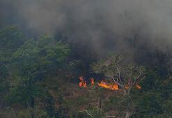 Amazon yangınları için Brezilyadan flaş karar