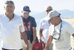 Doğaseverler Caretta carettayı kurtardı