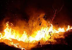 Brezilya Amazonlardaki yangınlara savaş uçaklarıyla müdahale ediyor