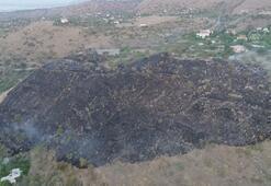 Akrebe kızdı 50 dekar otluk araziyi yaktı