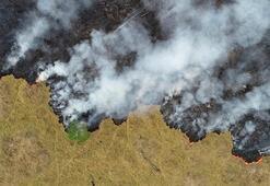 Yangının uydu verileri açıklandı: Rekor düzeyde