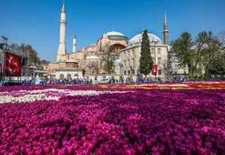 Ayasofya Türkiyenin zirvesinde