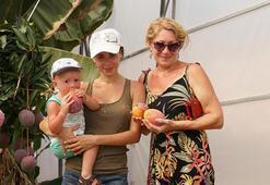 İlk kez gördüler Rus turistler mangoya hayran kaldı