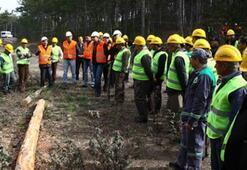 Orman Genel Müdürlüğüne personel başvurusu nasıl yapılır