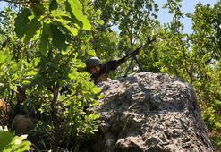 PKKya büyük darbe