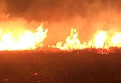 Son dakika | Avşa Adasında korkutan yangın
