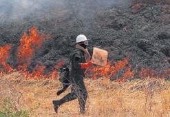 Dünyada 16 milyon yangın