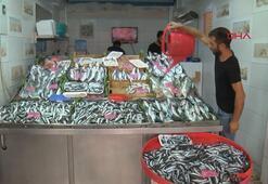 Çanakkalede av sezonunun başlamasıyla balık fiyatları düştü