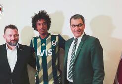 Luiz Gustavo, Fenerbahçede