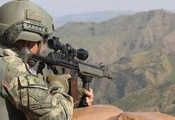 Kıran darbesi devam ediyor: 2 terörist etkisiz hale getirildi
