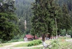 Karadeniz yaylalarında bungalov furyası