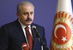 TBMM Başkanı Şentop: Türkiyeyi yücelteceğiz, büyüteceğiz ve geleceğini parlak kılacağız
