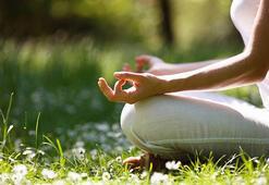Sinirlerinizi gevşetip huzur veriyor: Bach Çiçekleri Terapisi