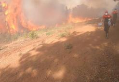 Bursa'daki orman yangınlarının failleri yakalandı