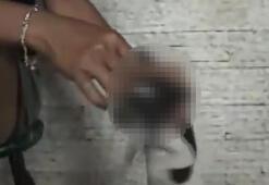 Vahşet kamerada: Yavru köpeğin gözünde sigara söndürdüler