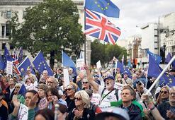 Brexit'te 'aile boyu' kriz