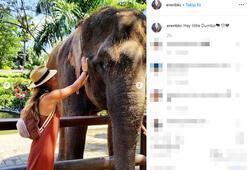 Bali tatili Instagramda