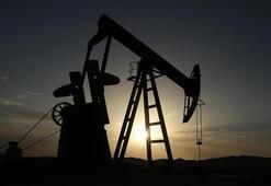 ABDde petrol sondaj kulesi sayısı azaldı