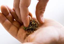 Kısırlık tedavisinde bu bitkisel ürünlere dikkat
