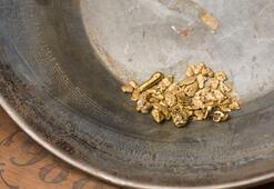 Küresel fonların altın yatırımı ağustosta 100 tonu aştı
